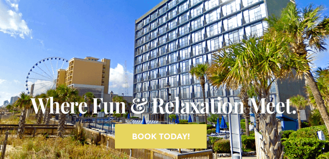 Where Fun & Relaxation Meet